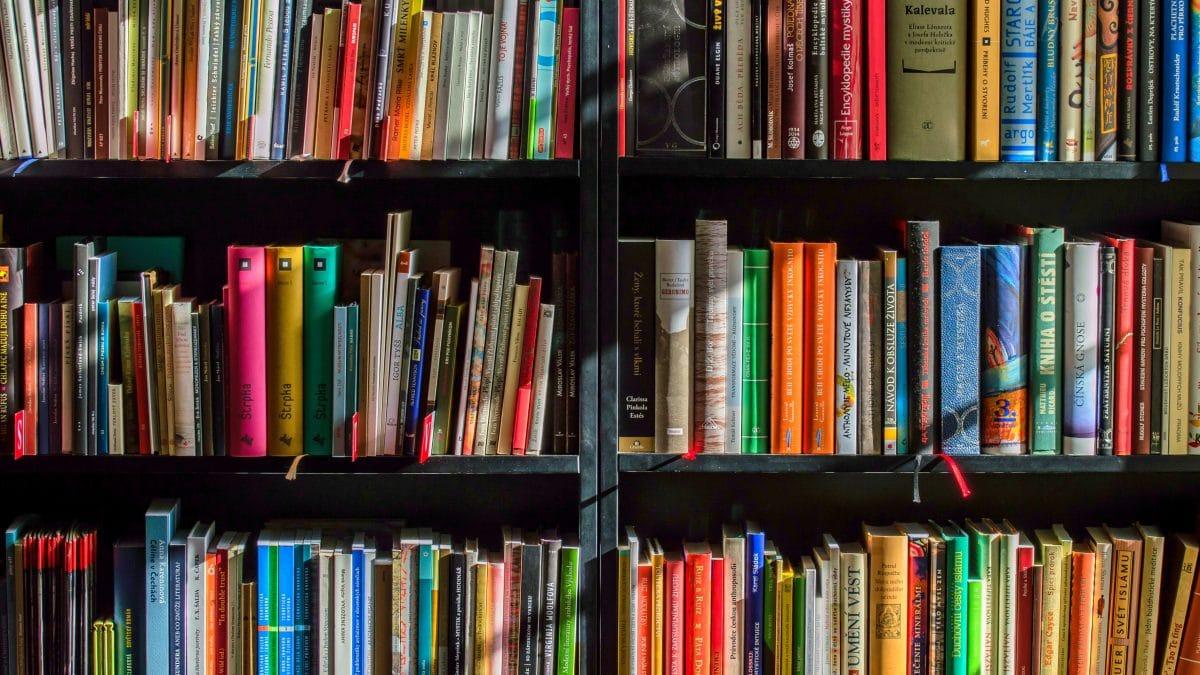 bookcase books bookshelves 159711